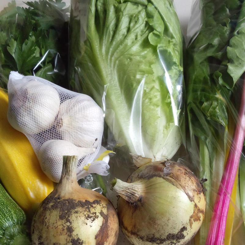 季節の野菜セット(Ⅼ)3800円 (送料・税込)