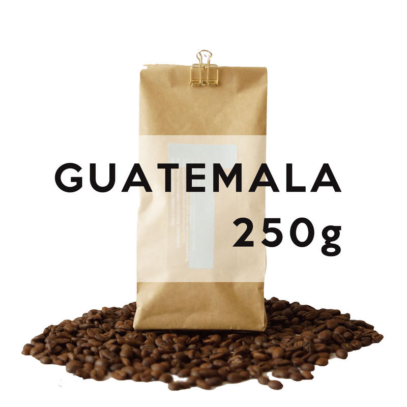250g グァテマラ アルコイリス農園  深煎り