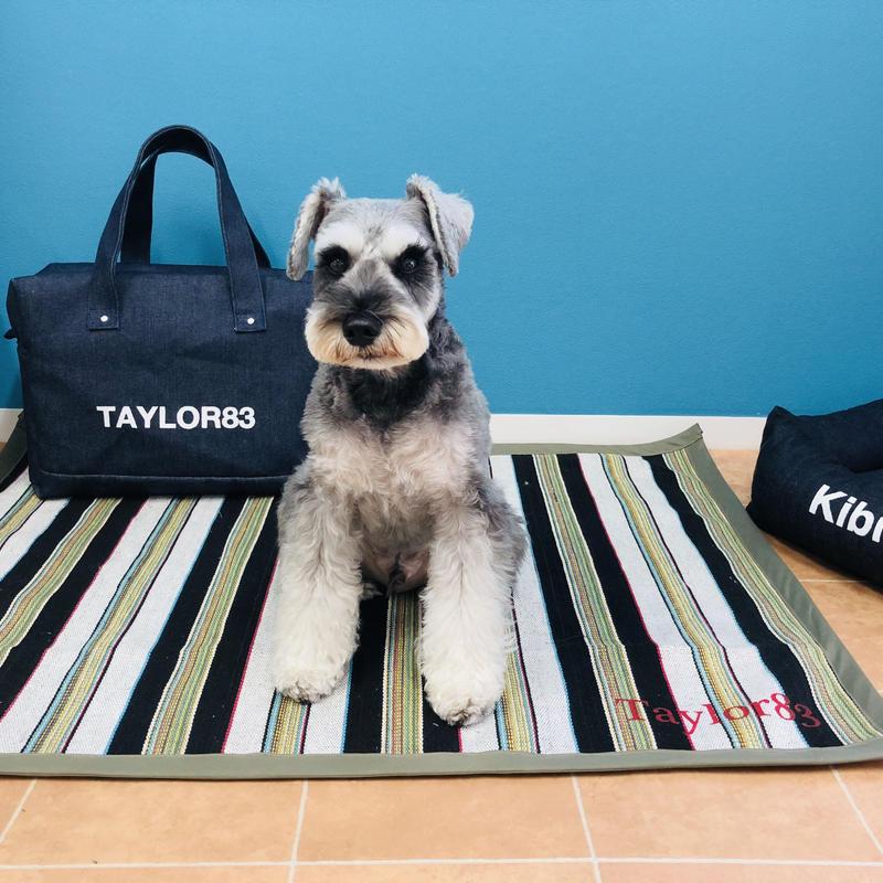 dog mat(ネイティブ)