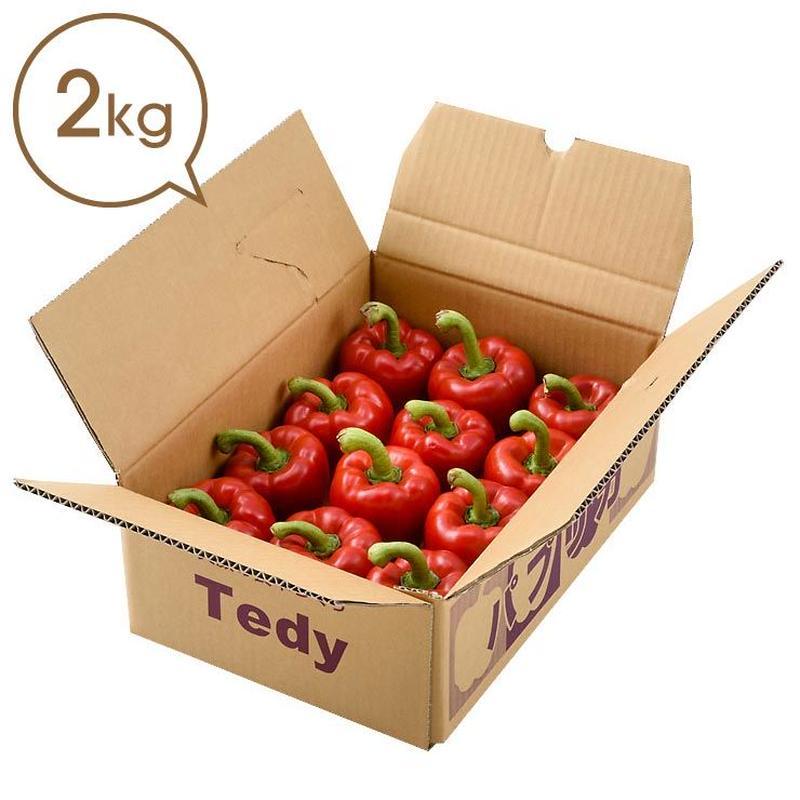 Tedyのパプリカ(赤)2kg詰め