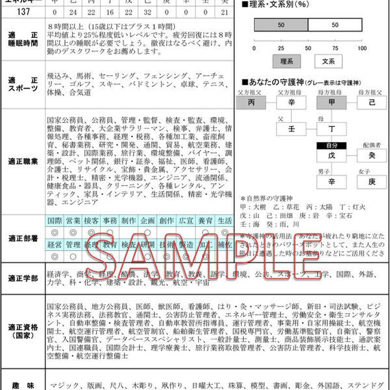 ハイステージ PDFファイル2ページ