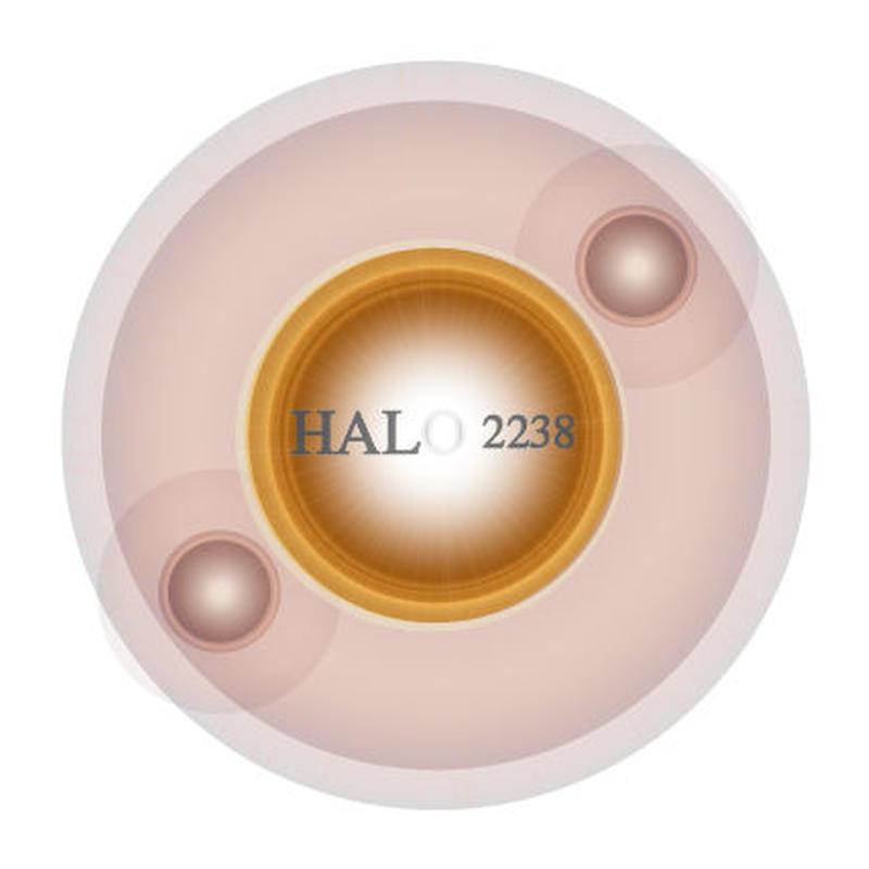 HALO2238エクセレント +対プラズモイド撃退ツール+  の予約販売