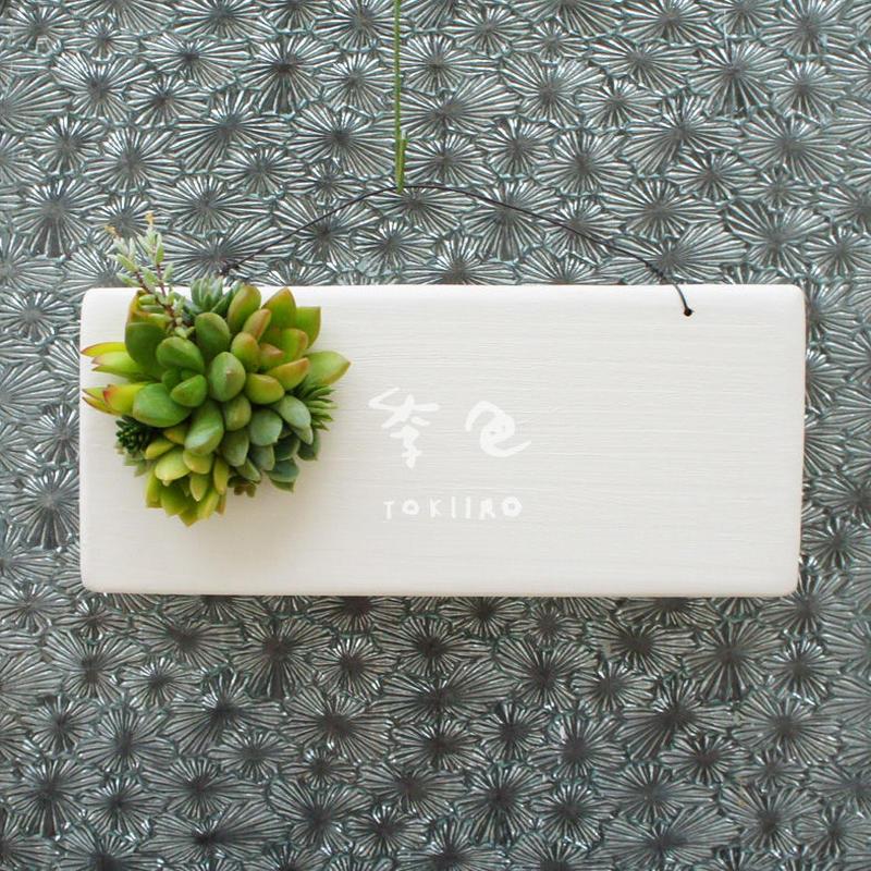 多肉植物のタブロー(TABLEAU)壁掛け 8cm×20cm