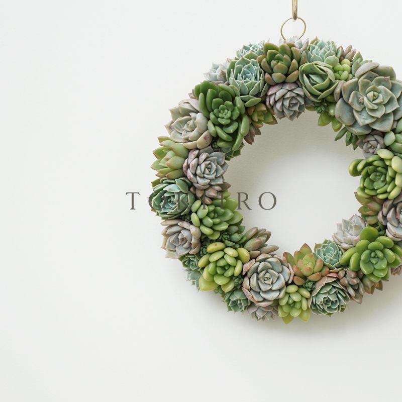 Wreath 多肉植物のリースL