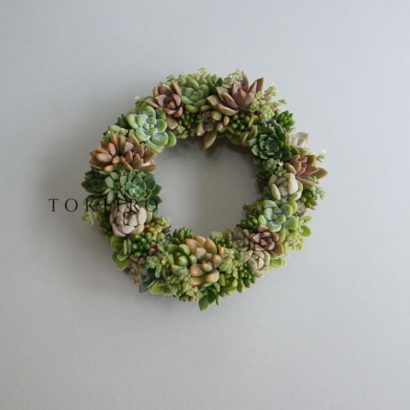 Wreath 多肉植物のリースM