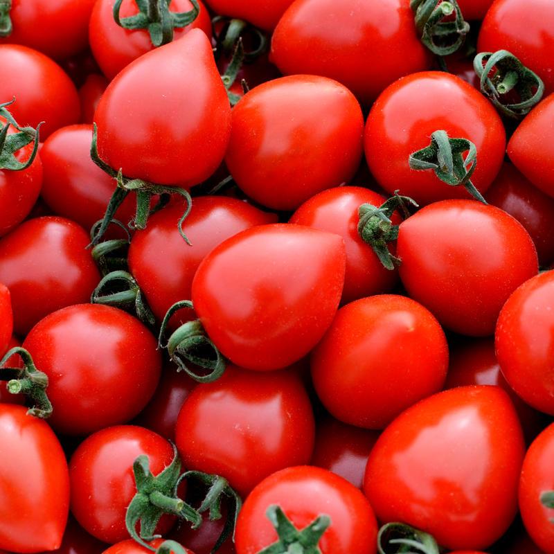 トマトベリー1箱(約1.5kg)