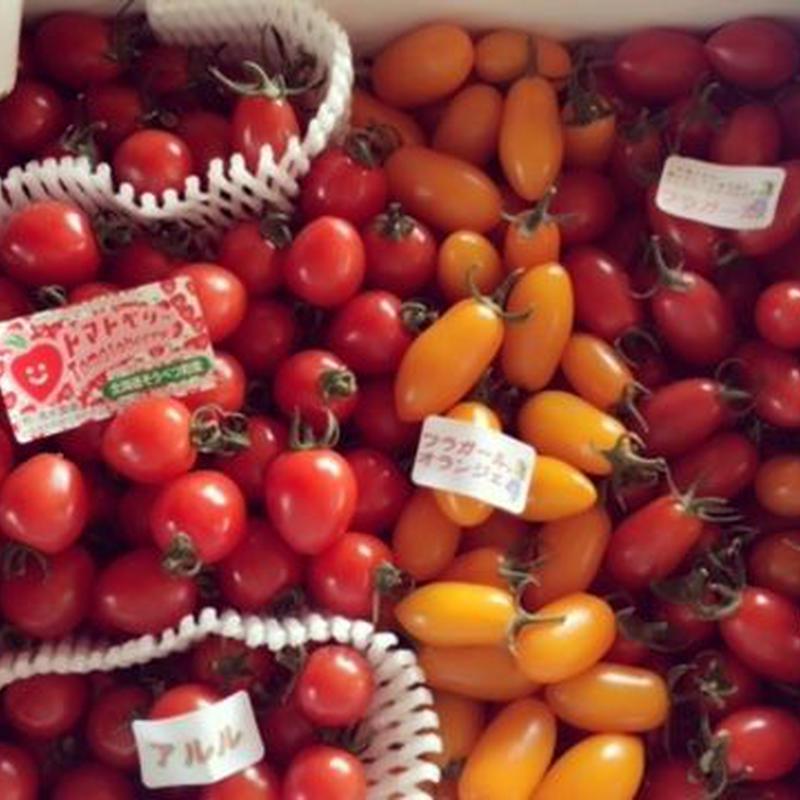 彩りミニトマトセット1箱(1.5kg)