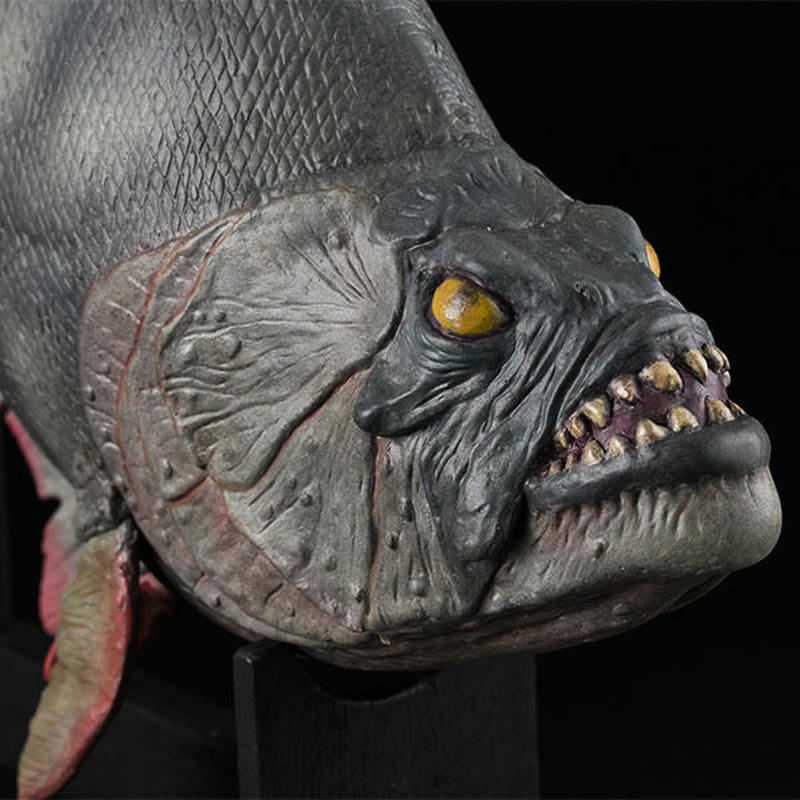 Piranha Prop Replica Model (Fiberglass version) with walnut display stand