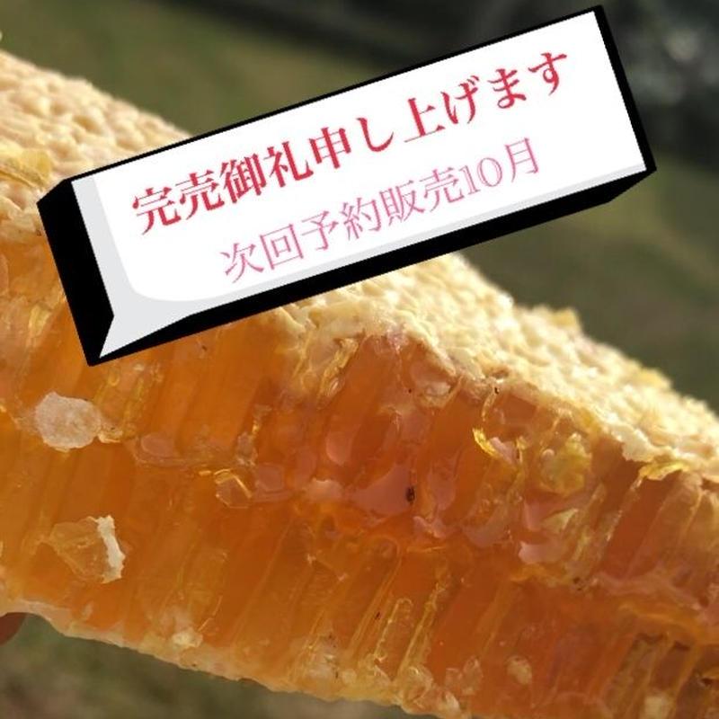 日本みつばち巣蜜【コムハニー200】