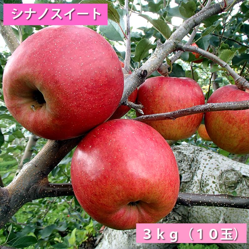 【送料無料】「シナノスイート」3kg(約10玉)【青森県産りんご:家庭用】