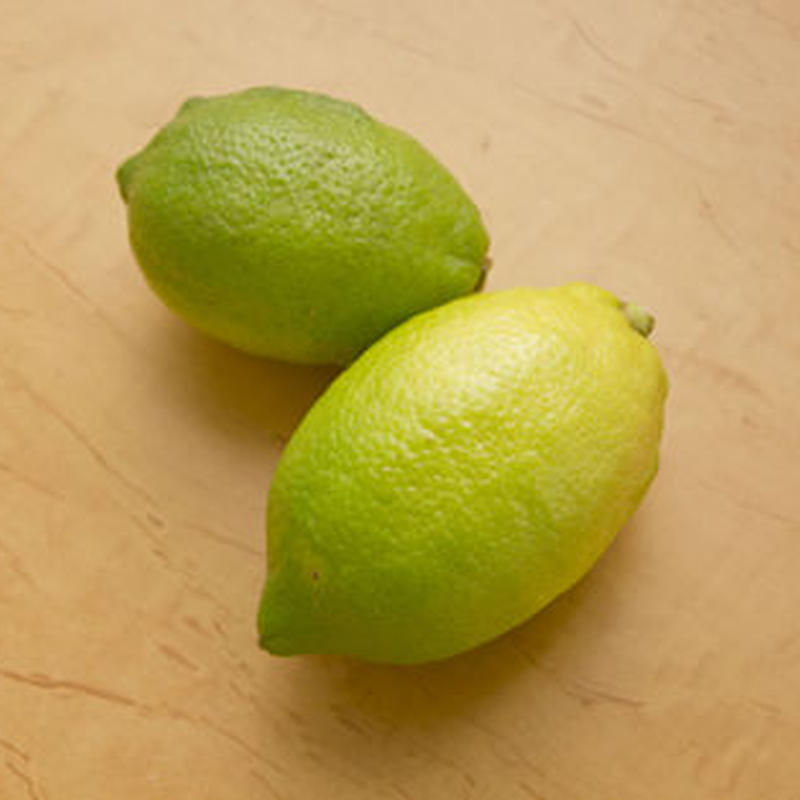 【再販開始!】リスボンレモン(青レモン) 5kg