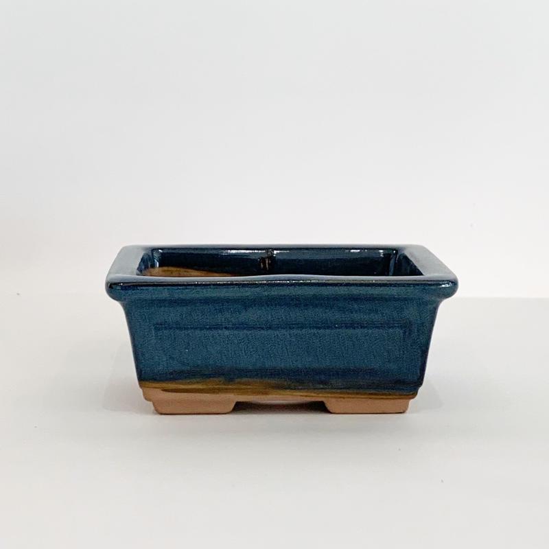 豆盆栽鉢 長方形