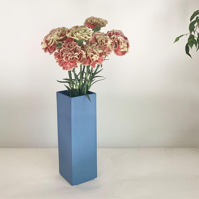 【母の日】カーネーション10本 グルーミー複色とブルースクエアベース)