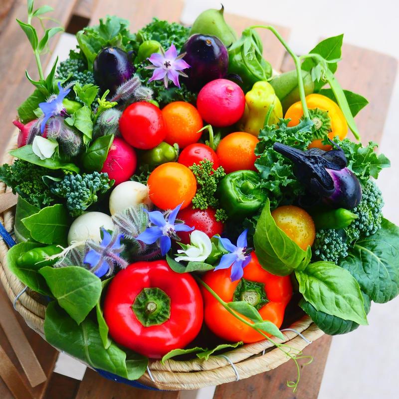 旬の野菜を詰め合わせギフトにおすすめケーキみたいな野菜ブーケ(クール便送料無料)