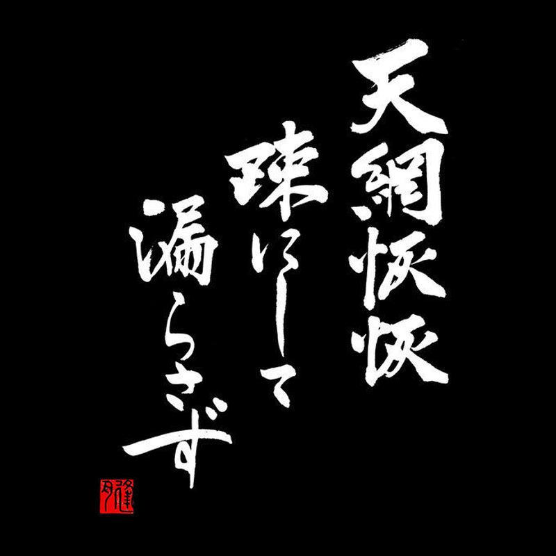 天網恢恢疎にして漏らさず【日本国製プレミアム】黒