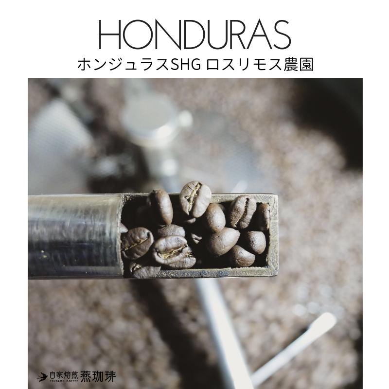 HONDURAS  ホンジュラスSHG ロスリモス農園マイクロロット210g