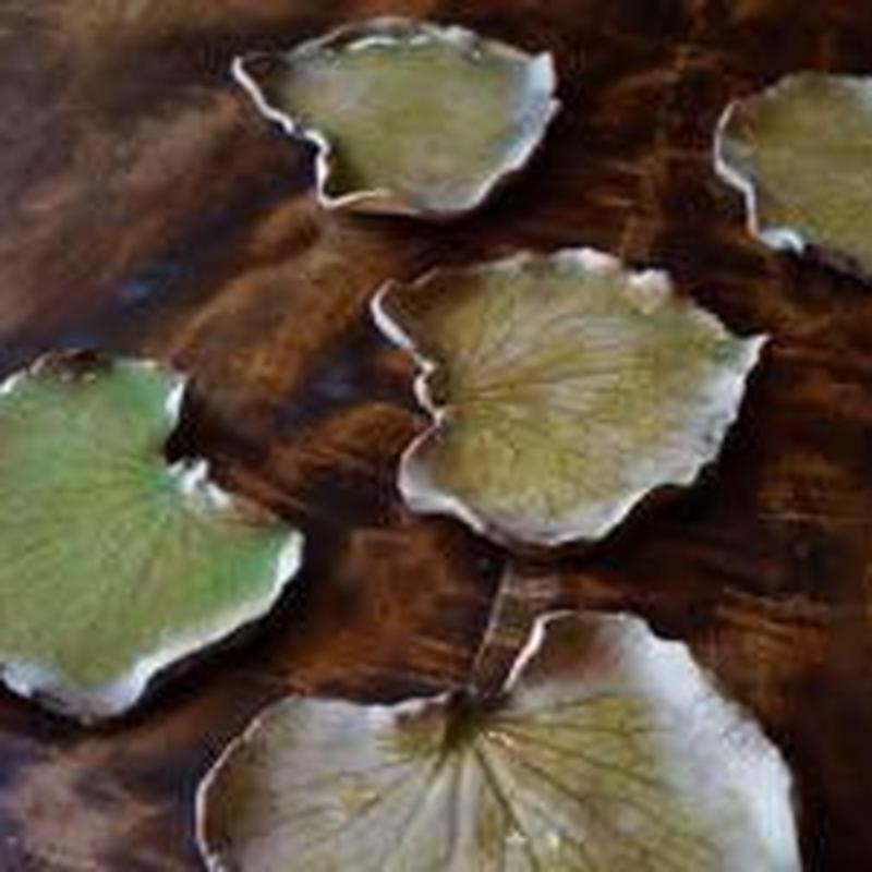 【小平皿】蓮の葉5枚セット