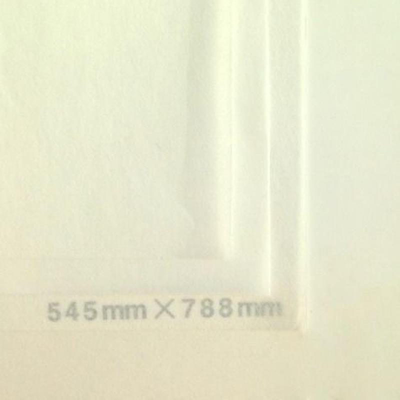 ホワイト20g 545mmx394mm 100枚