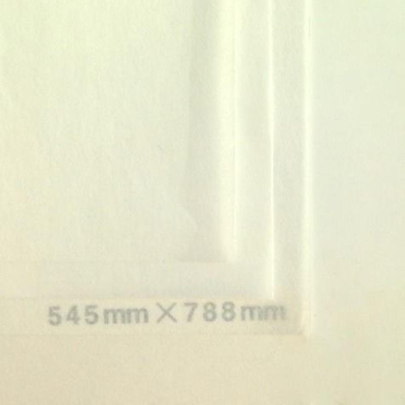 ホワイト20g 545mmx394mm 200枚