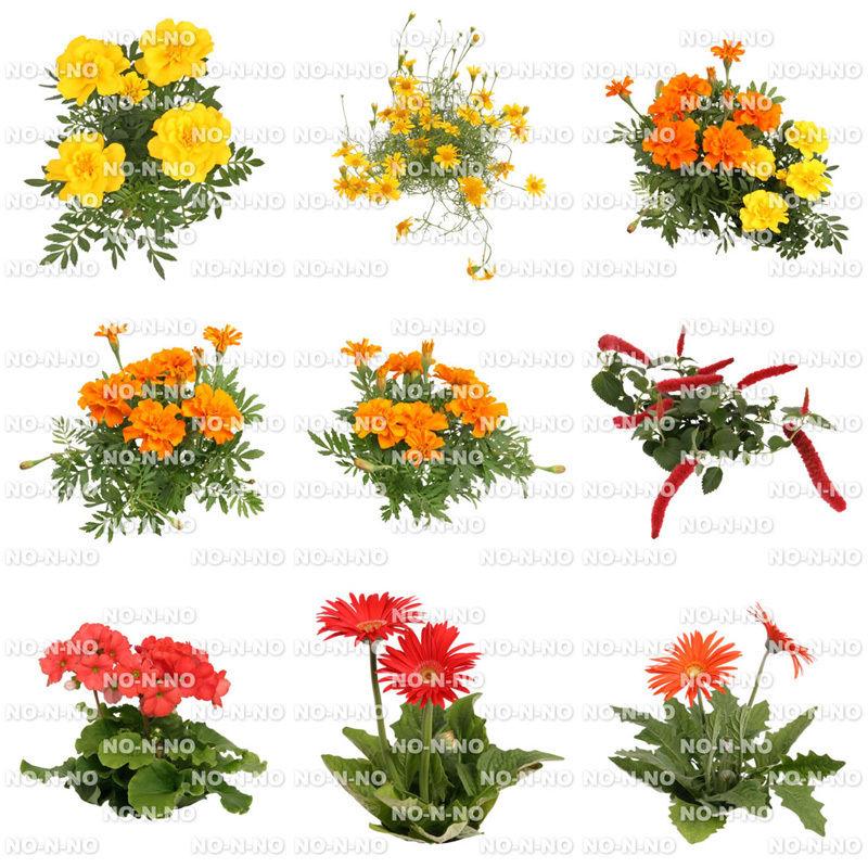 花の切り抜き素材 9個セット F_007