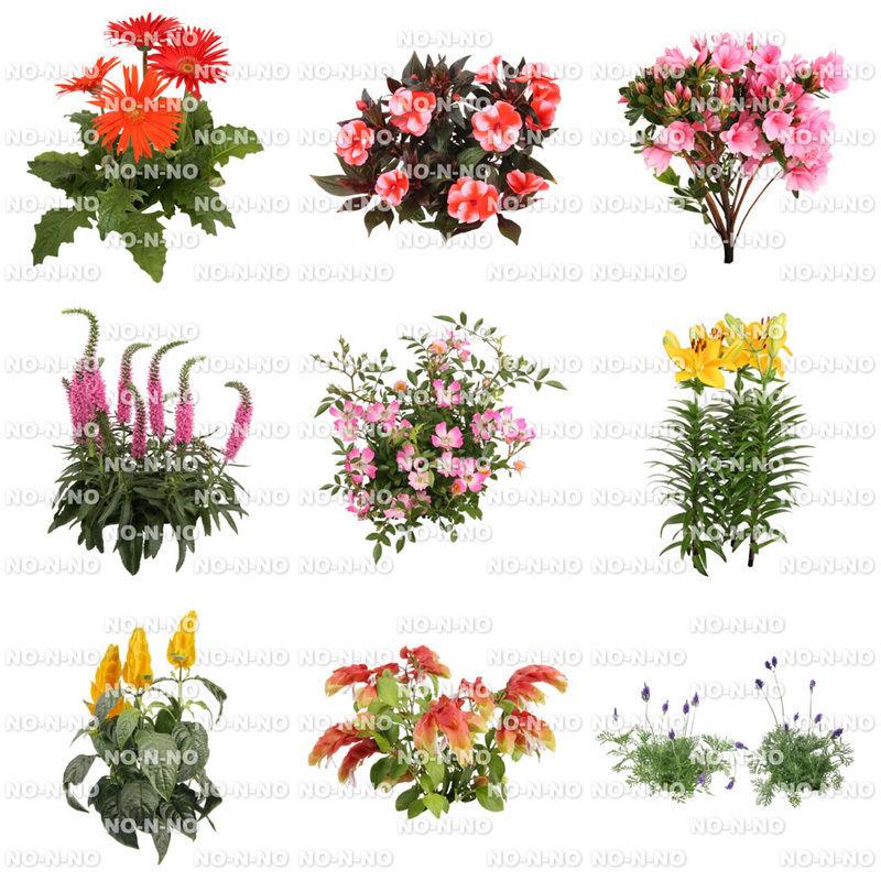 花の切り抜き素材 9個セット F_008