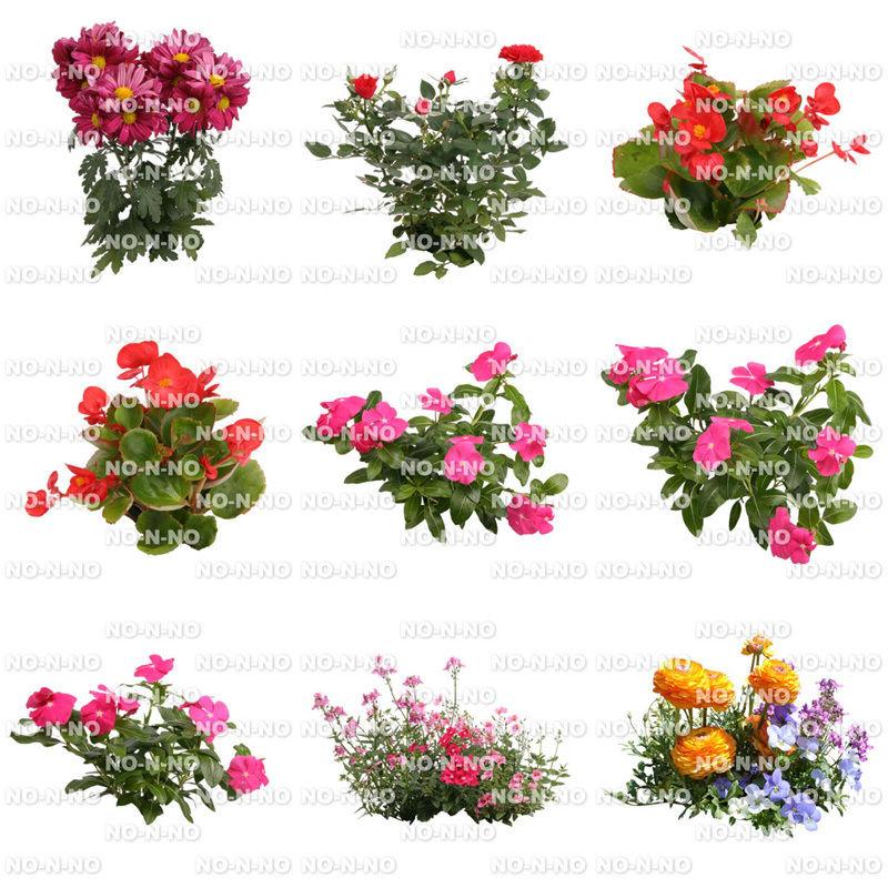 花の切り抜き素材 9個セット F_015