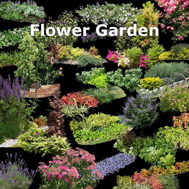 ガーデン庭木素材 寄せ植え  35個セット  G30_09