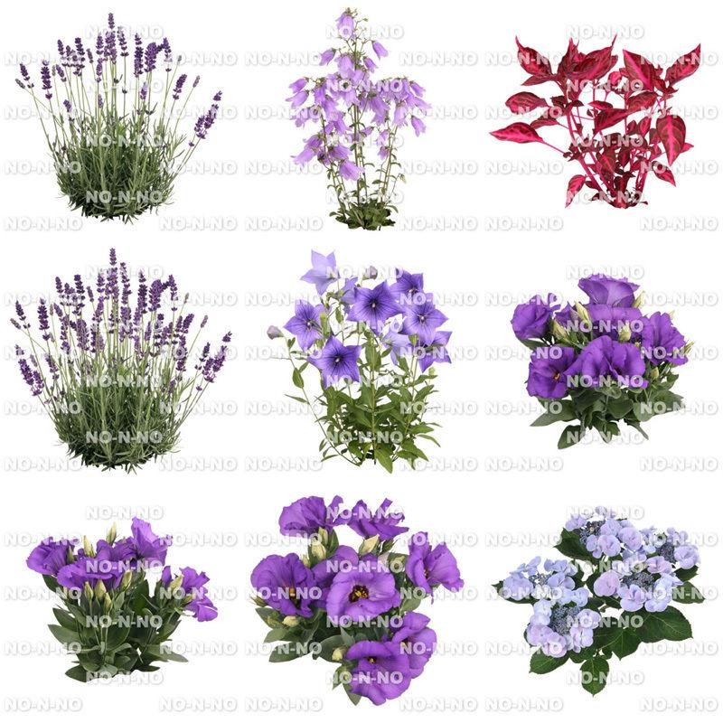 花の切り抜き素材 9個セット F_009