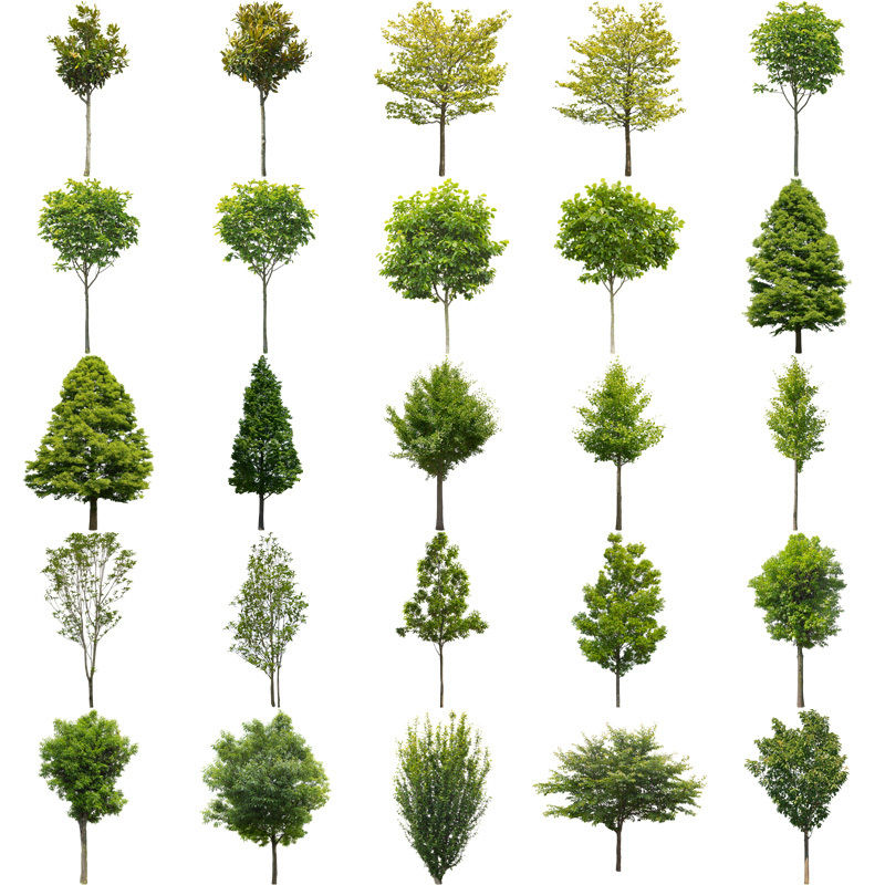 無料樹木素材セット 100個 free_trees_set01