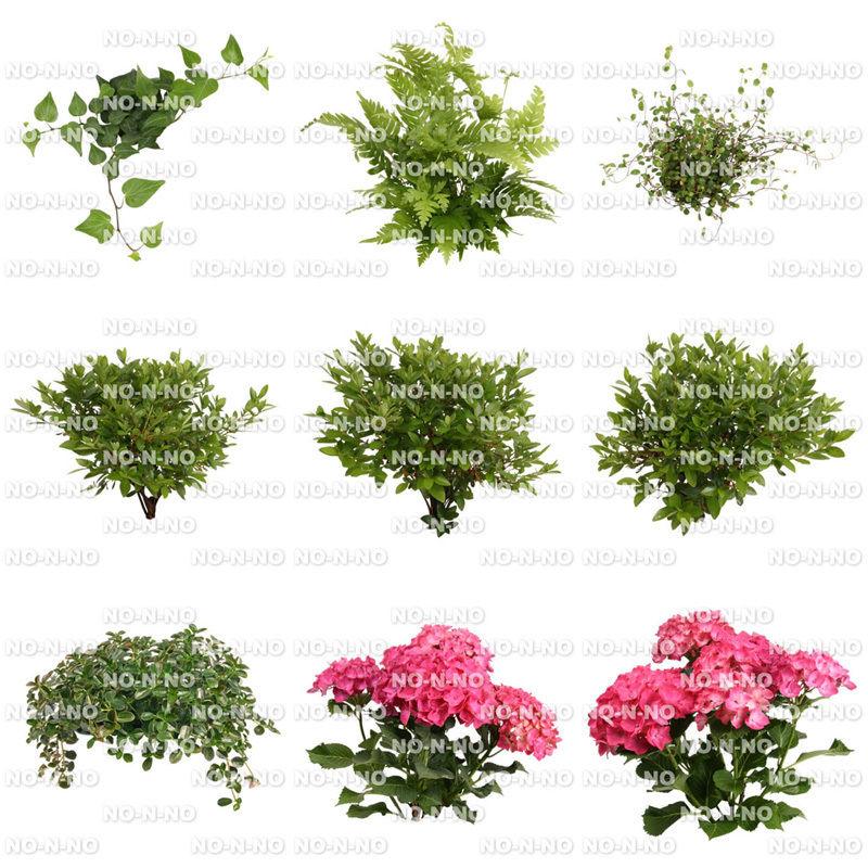 花の切り抜き素材 9個セット F_018