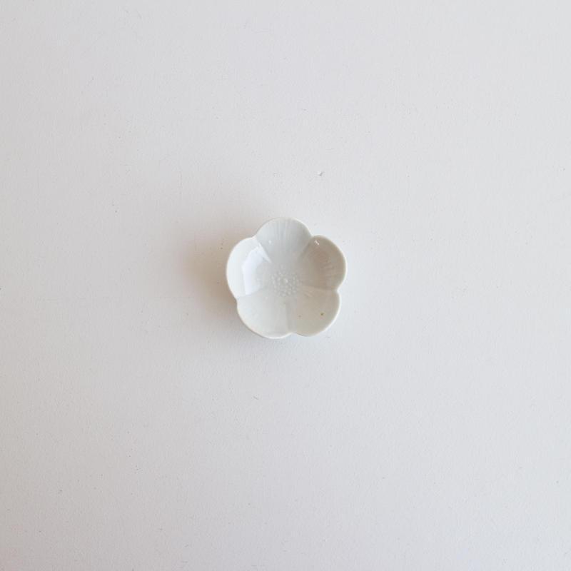 前田麻美 白磁芙蓉豆々皿