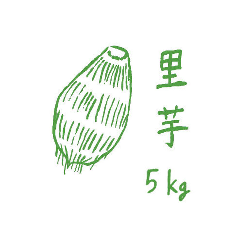 自然栽培里芋5kg