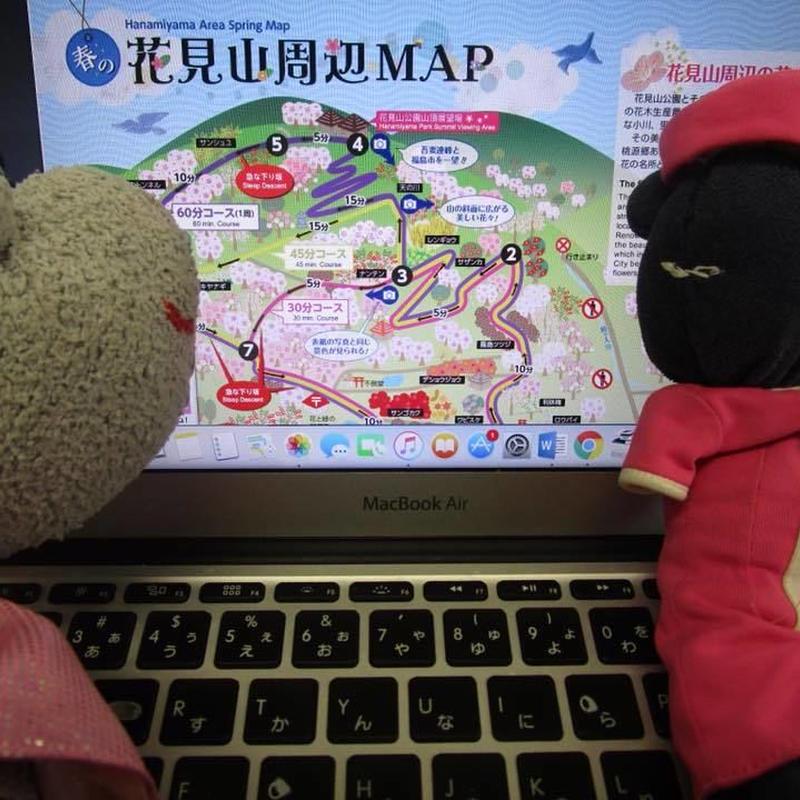 花見山&福島ミステリーツアー(往復新幹線)