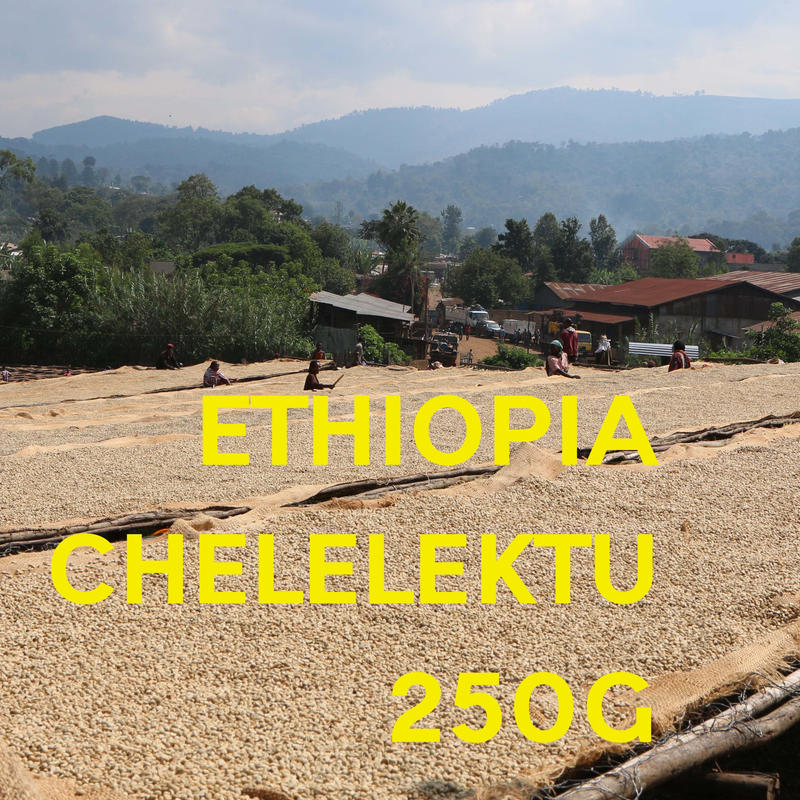 【SPECIALTY COFFEE】250g Ethiopia Yirgachefe Chelelektu 1.600-2.000m F. W. / エチオピア イルガチェフ チェレレクトゥ F.W.