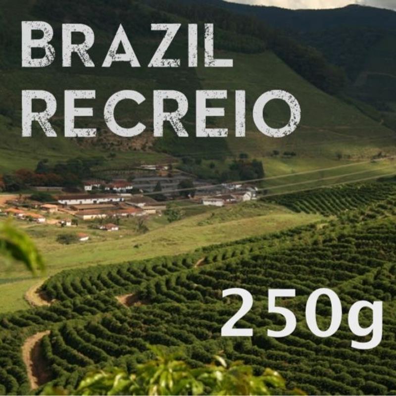 【SPECIALTY COFFEE】250g Brazil Recreio 1.100-1,280m Pulped Natural / ブラジル ヘクレイオ パルプトナチュラル