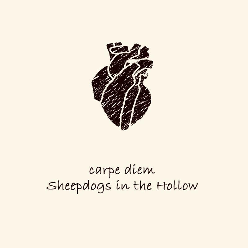 Sheepdogs in the Hollow - carpe diem / étranger