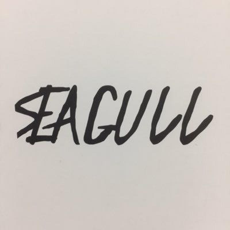 SEAGULL - 1st demo
