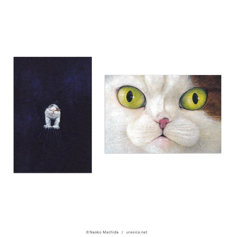 町田尚子「ネコヅメのよる」ポストカード(2枚組)