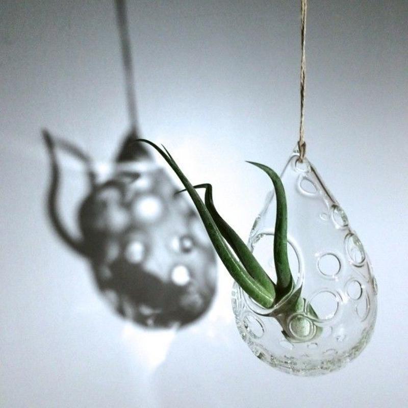 -Bubble drop- for Air plants エアープランツ用 吊り花器