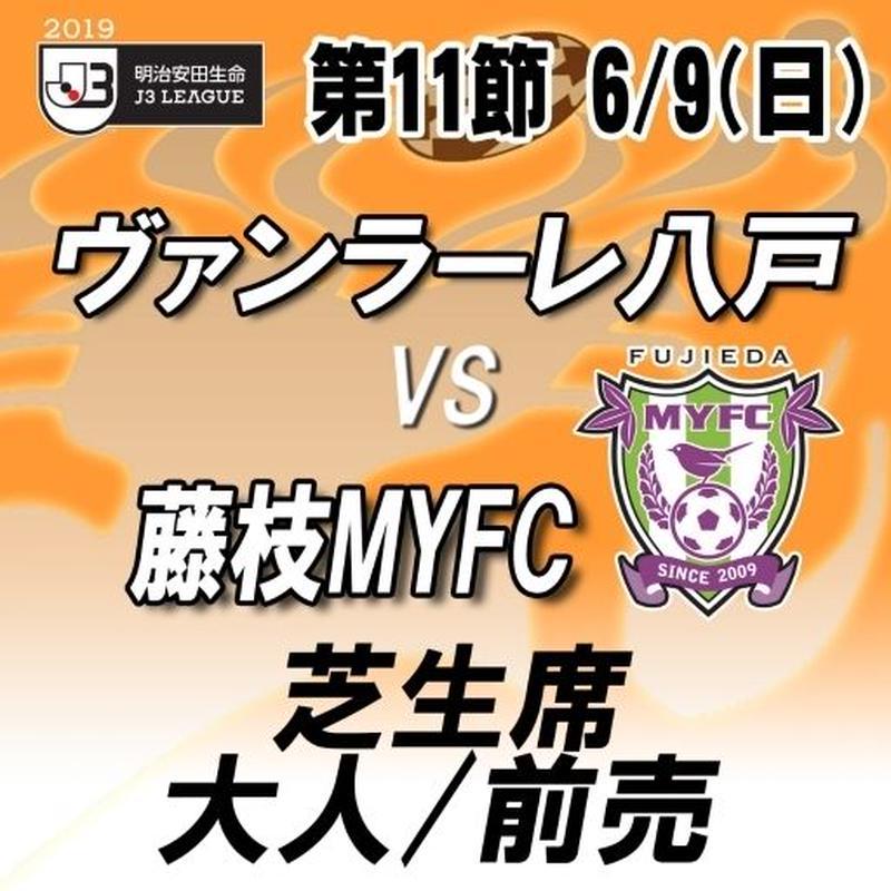 2019年6月9日(日)J3第11節ヴァンラーレ八戸vs藤枝MYFC 芝生席 大人/前売