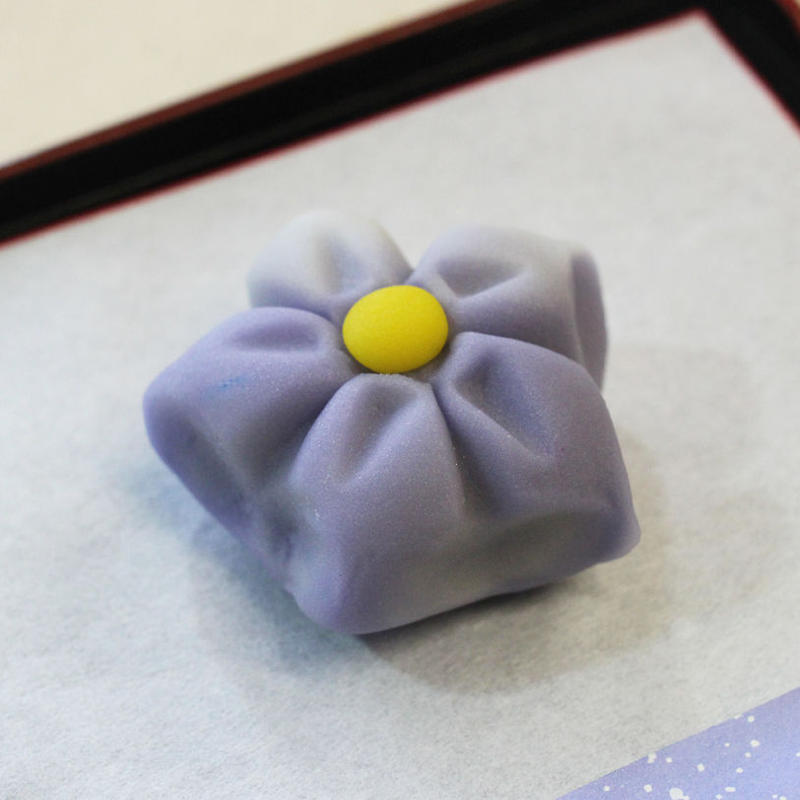 おうちで楽しむ ねりきり☆材料セット/ハロウィン+桔梗