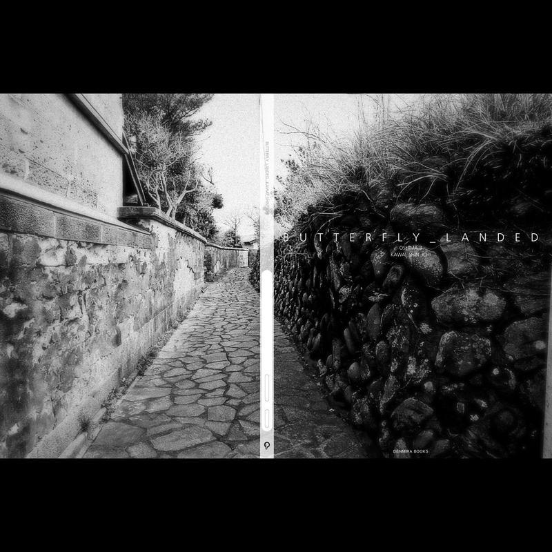 【写真集】BUTTERFLY_LANDED Oshima 3