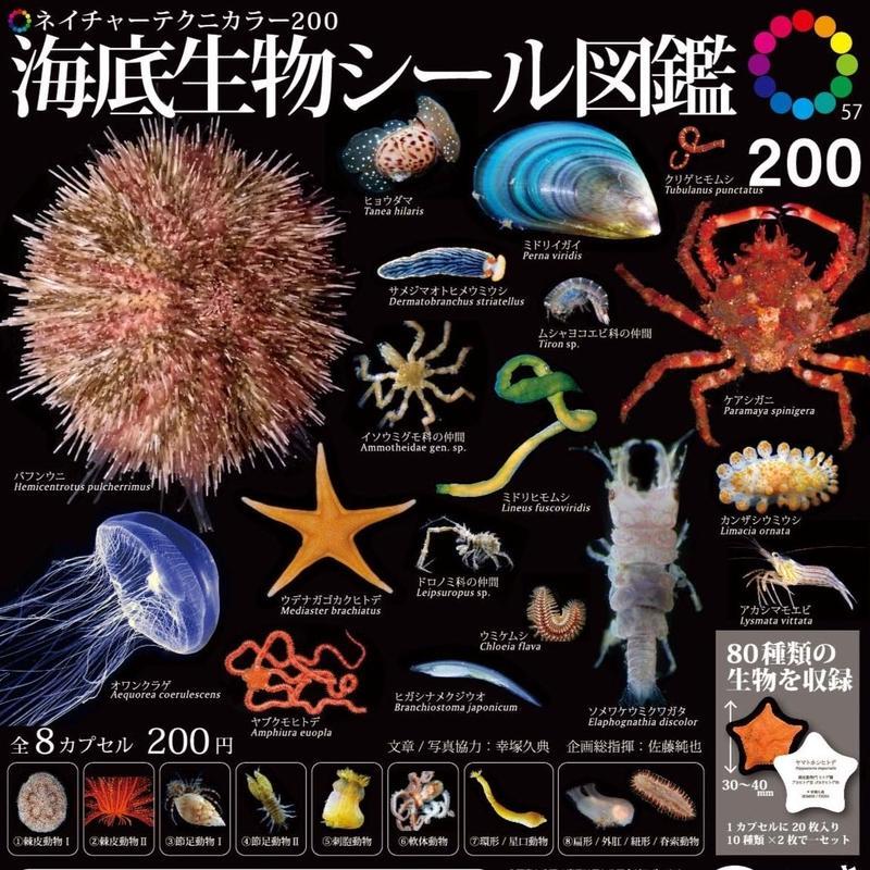 NTC200 海底生物シール図鑑