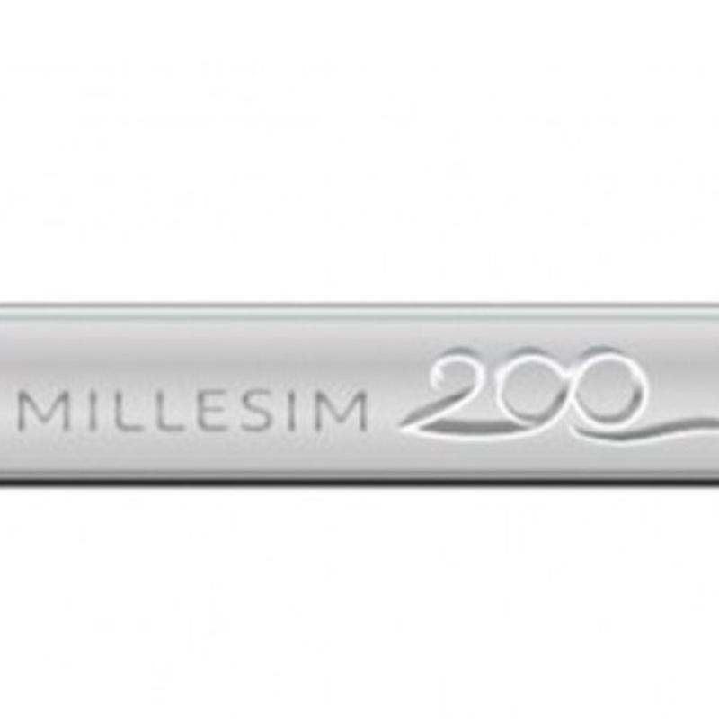 Peugeot 純正 MILLESIM 200 エンブレム