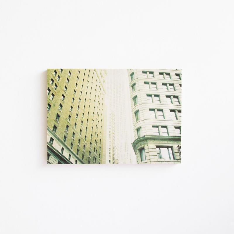 Shinsuke Tanaka/Photographer SIZE:A4