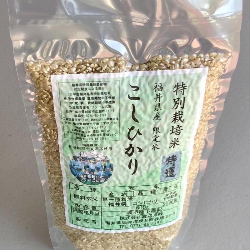 Chemical-free Brown Rice (農薬・化学肥料不使用玄米)600g*4 packs