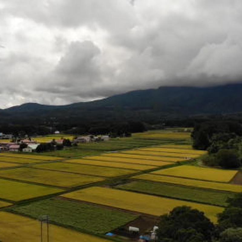 ドローン空撮-低空の川から田んぼ(2K)