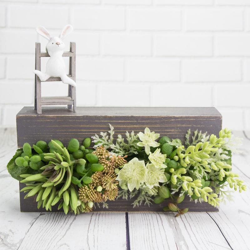 Rabbit BOX ~ 🌺 多肉植物 🌺 ~