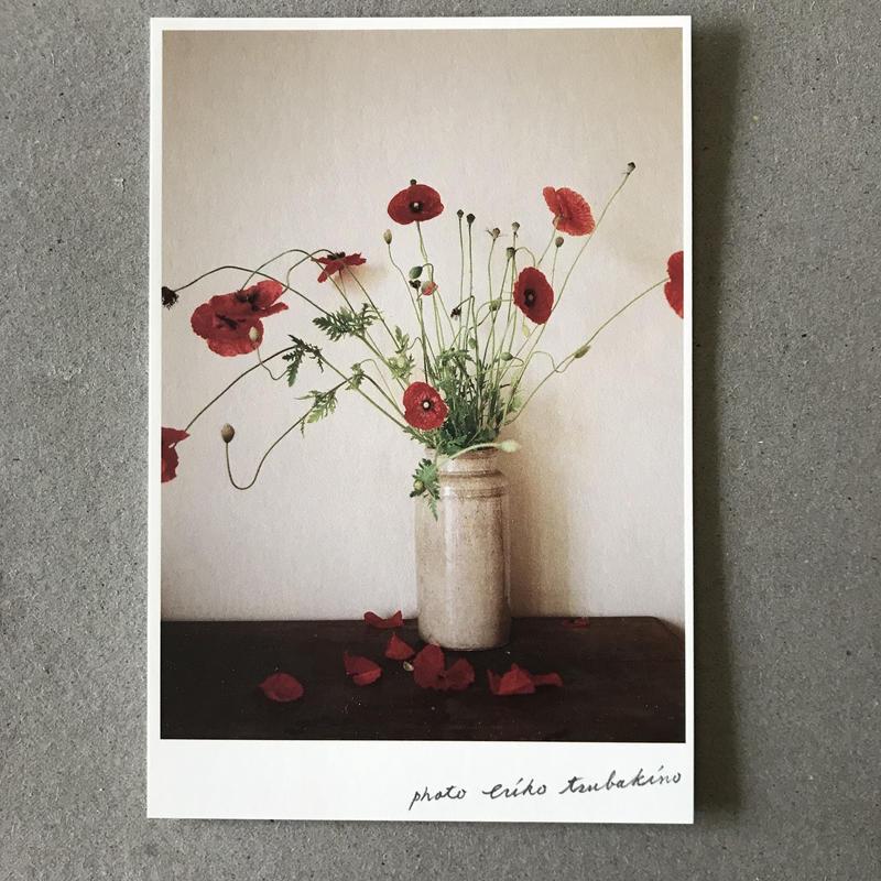 季節の葉書 赤い芥子