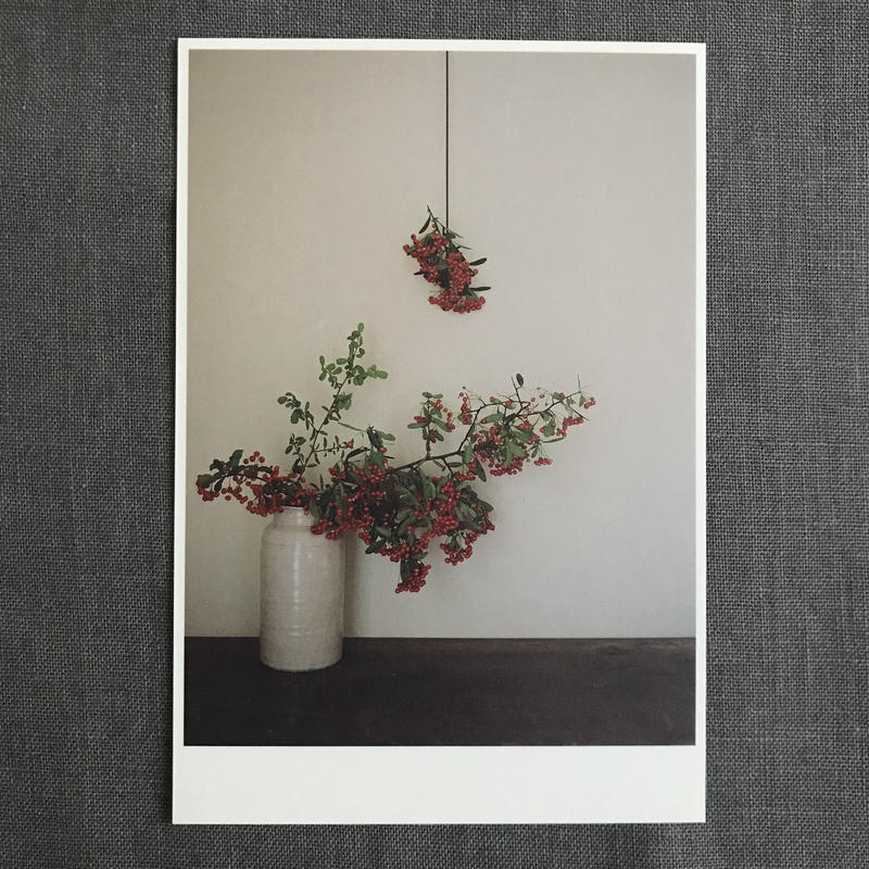 季節の葉書 ピラカンサス